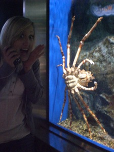 Marisa is there for scale...ew. Crabs are the spiders of the sea!